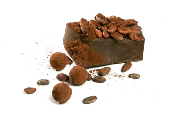 Are Cocoa Beans An Endangered Species?